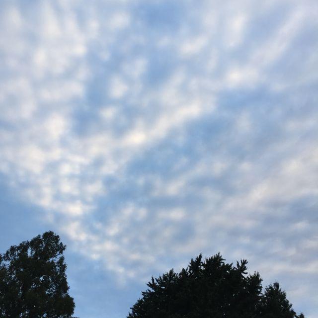 2010_19.jpg